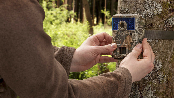 How to hide Trail Cameras for Security 2020